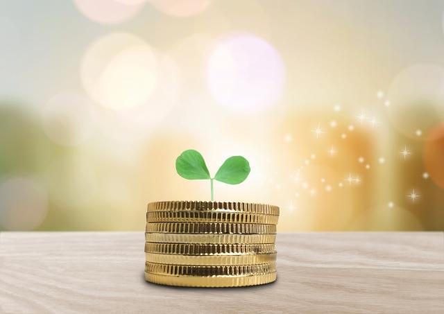 SKA,アカデミー,借金,借金返済,プロミスはいくらまで借りられる?